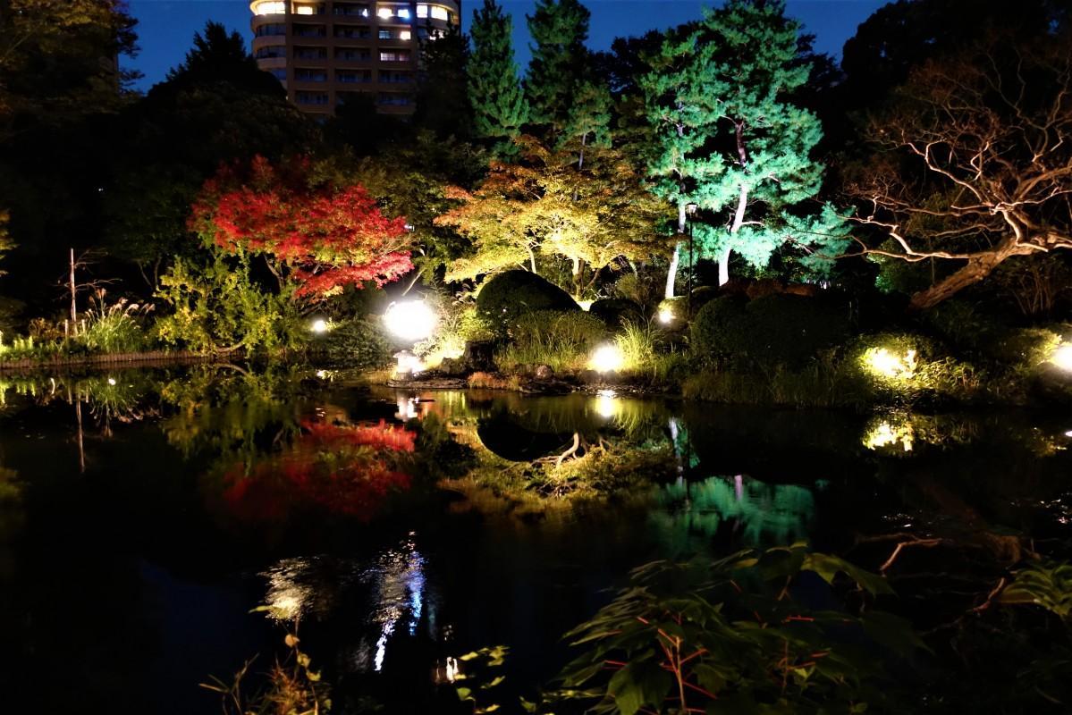 点灯式当夜の甘泉園公園のライトアップ