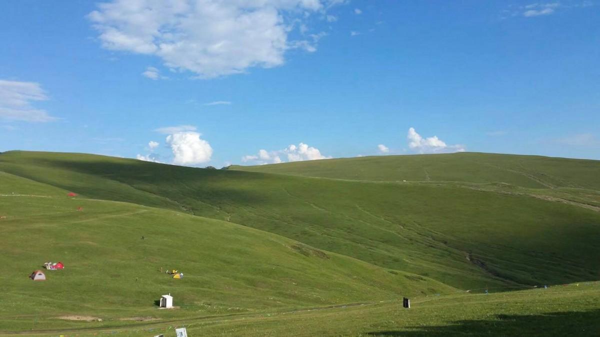 内モンゴル自治区の草原の風景