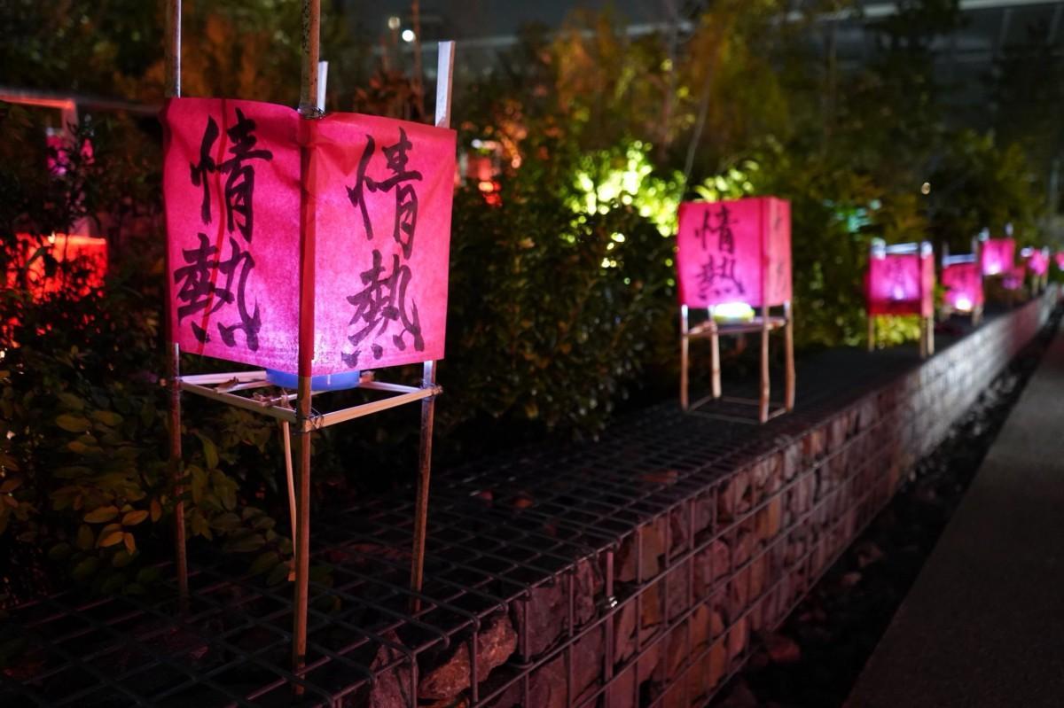 「情熱」と書かれた100個の赤い灯篭で「戸山の丘」がライトアップされた(撮影:松尾祐奈さん)