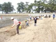 高砂海浜公園でアオサ清掃 親子連れなど100人が参加