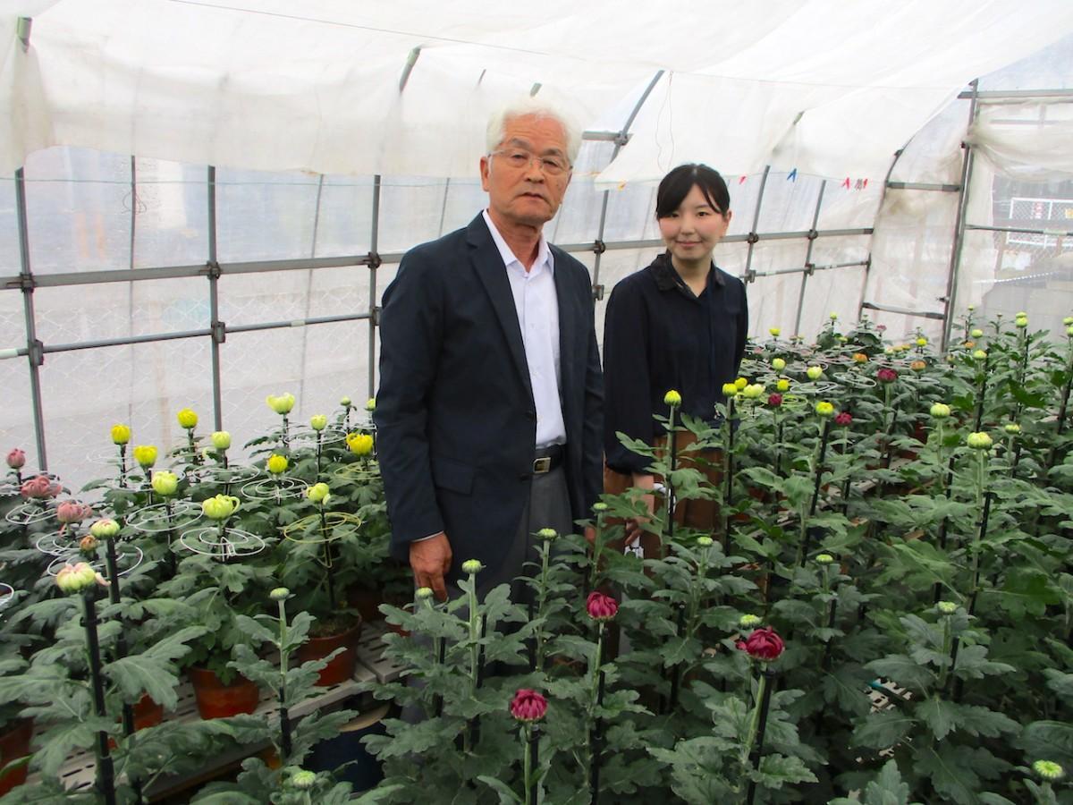 菊を育てるビニールハウス内で催しをPRする濱野さん(左)と大塚さん(右)