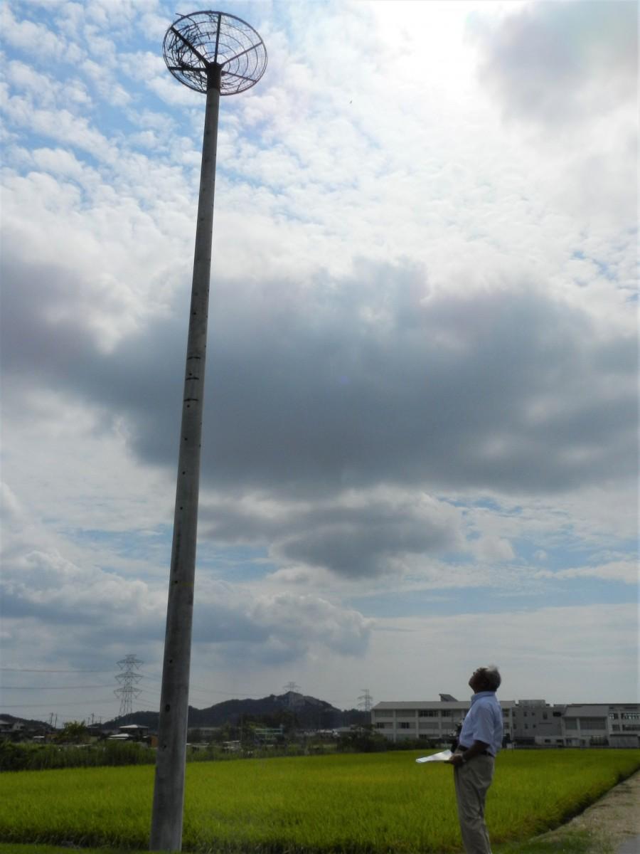 人工巣塔を見上げる黒田憲一さん