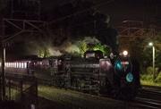 D51でホタル鑑賞、SL夜汽車で月夜野へ 予約好調