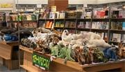 海と山の動物「ぬいぐるみ展」想定外の人気で延長 紀伊國屋書店