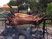 実は恒例「豚の丸焼きパーティー」参加募集 高崎の牧場、キャンプ可
