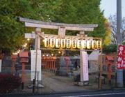 「サンカクエリア」を知って 前橋八幡宮でナイトマーケット開催へ