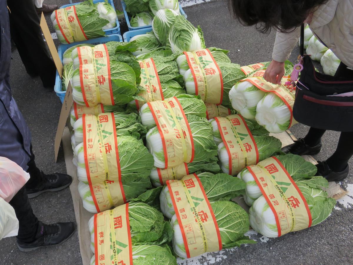 「国府白菜」は高崎市の国府地域で生産するブランド野菜