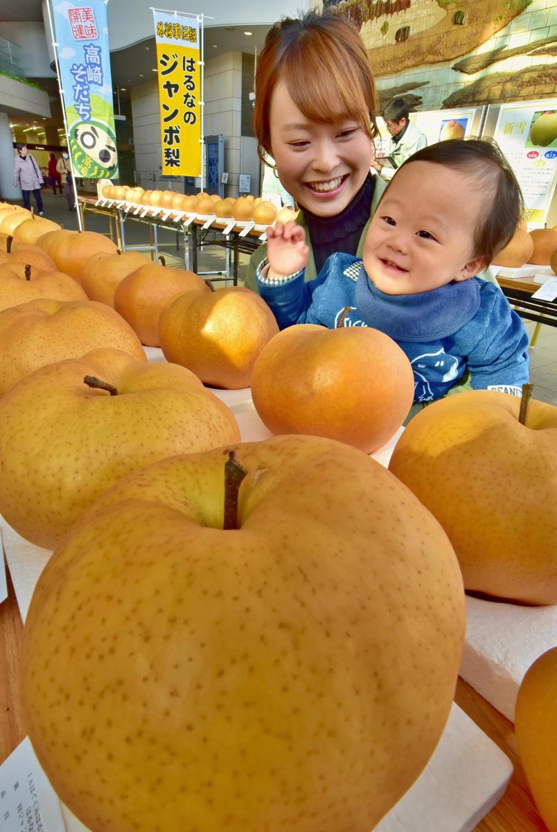 巨大な梨に喜ぶ加部優羽ちゃん(1歳)。コンテスト会場の高崎市役所1Fロビー