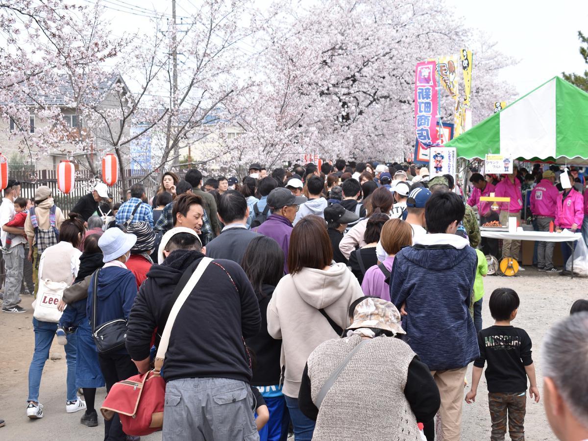史上最大の人出となった「しんまち桜まつり」。写真は桜並木の入口