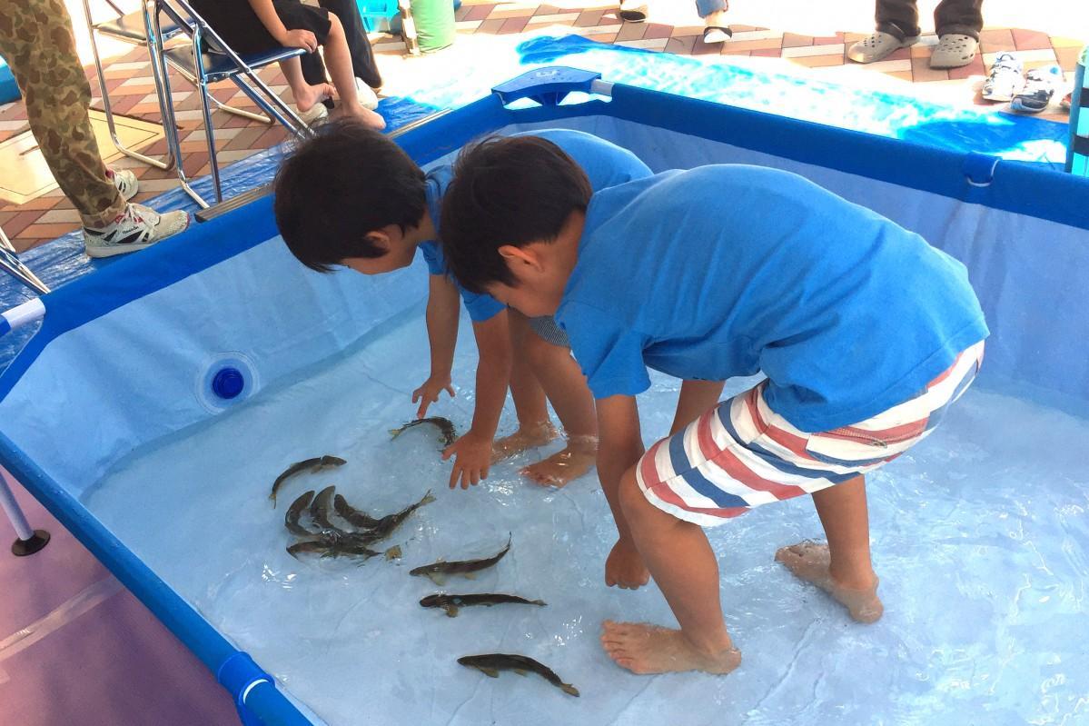 初開催の魚のつかみ取り(イメージ写真)