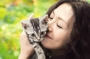 映画「グーグーだって猫である」-VIOROでコラボパネル展
