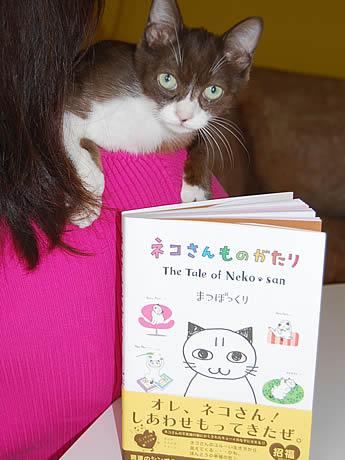 警固に住む1匹の猫をモデルにして描いた本「ネコさんものがたり」が発売
