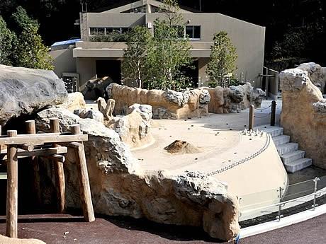 福岡市動物園に新しいアジアゾウ舎がオープン