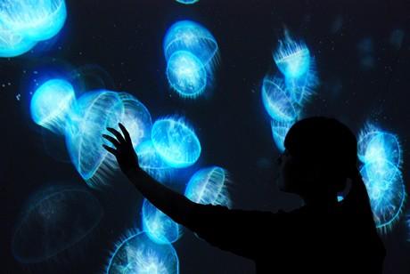 暗い空間の中、スクリーンに手を近づけるとクラゲの群れが発光して近づいてくる作品「光と遊ぶ空間」