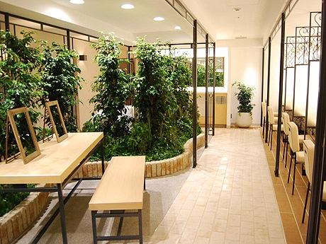 1.5倍に拡張した4階女子トイレ・パウダールーム