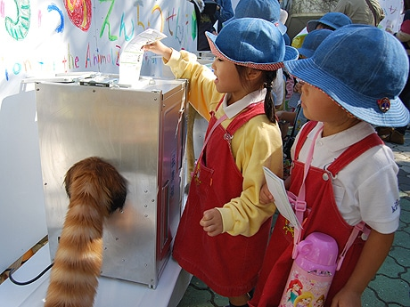 投票するとしっぽが動く仕組みの投票箱に驚く園児たち