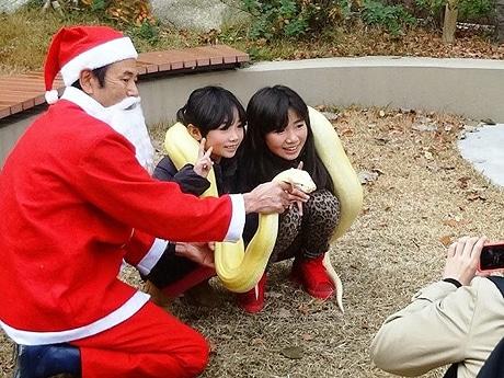 昨年、サプライズで登場したヘビサンタ(写真=福岡市動物園提供)