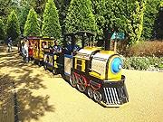 福岡市植物園が「ガーデントレイン」運行へ 園内広場を往復