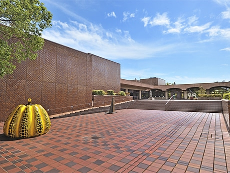 福岡市美術館で、休館までの5ヶ月間「クロージング/リニューアルプロジェクト」始まる