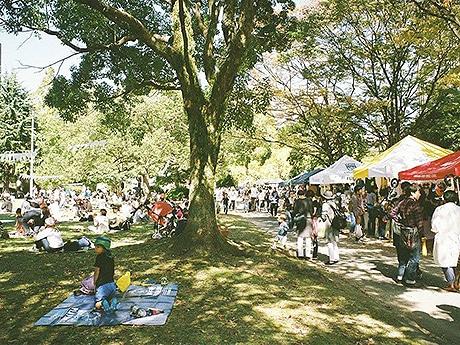 北天神の須崎公園で野外イベント「NORTH TENJIN PICNICS'16」が開催