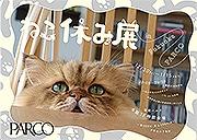 福岡パルコで「ねこ休み展」 SNSで人気の猫撮影した写真やグッズ一堂に