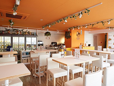 大名に梅酒・果実酒専門店「SHUGAR MARKET」がオープン(写真は新宿店店内の様子)