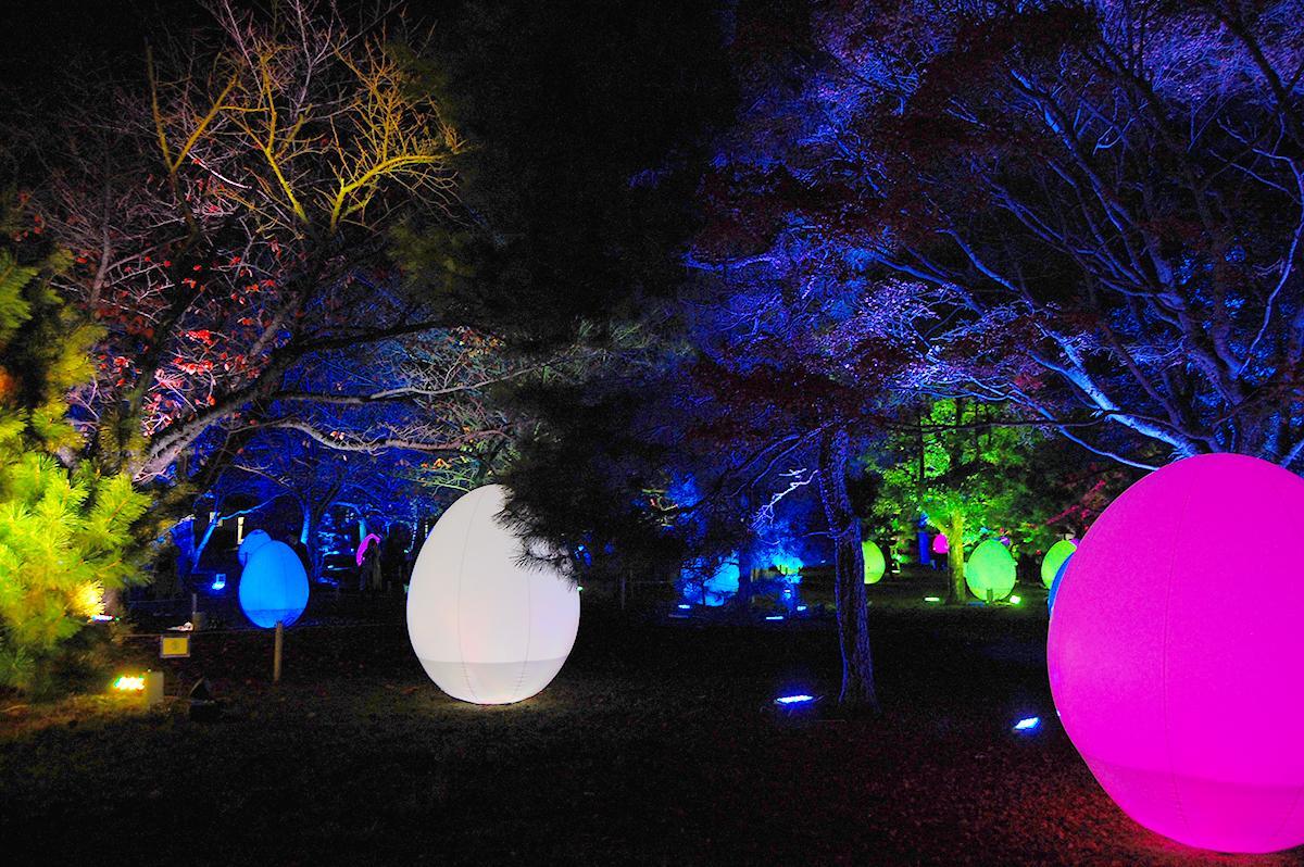 舞鶴公園・福岡城跡で「福岡城 チームラボ 城跡の光の祭」が開催