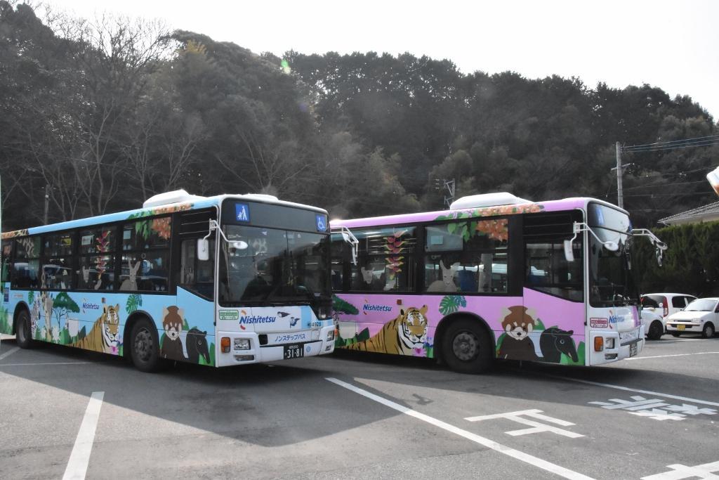 ピンクと水色の車体の3代目ラッピングバス。チンパンジー号とカワウソ号。車内にはぬいぐるみも。