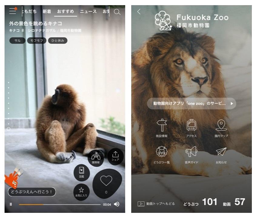 動物園向けアプリ「one zoo」の利用画面