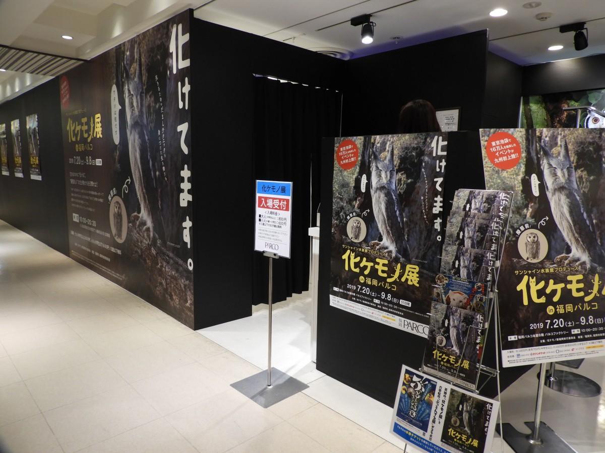 「サンシャイン水族館プロデュース 化ケモノ展 in 福岡PARCO」外観