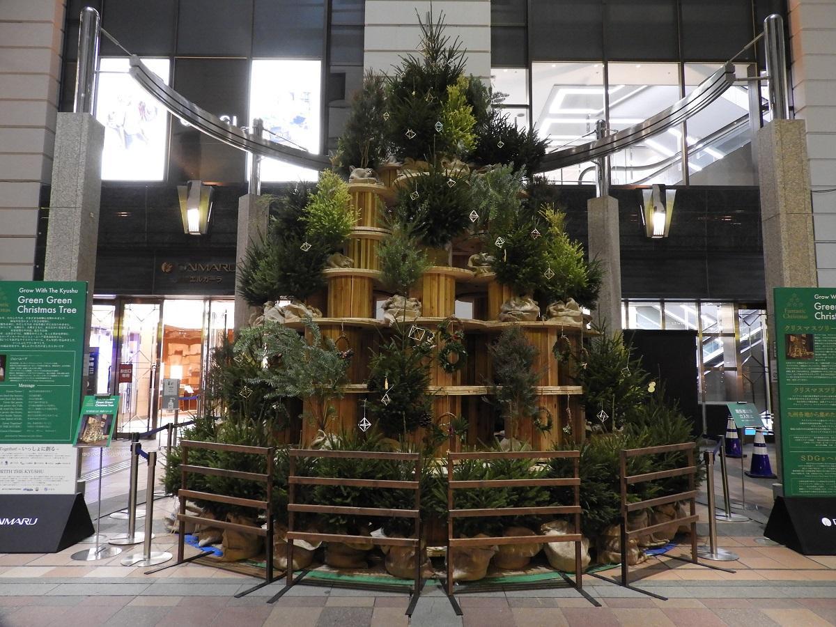 11月12日の「グリーン グリーン クリスマスツリー」の様子