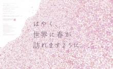 九州の企業有志が「いまできることプロジェクト」始動へ 「サクラ新聞」に桜ムービー展開