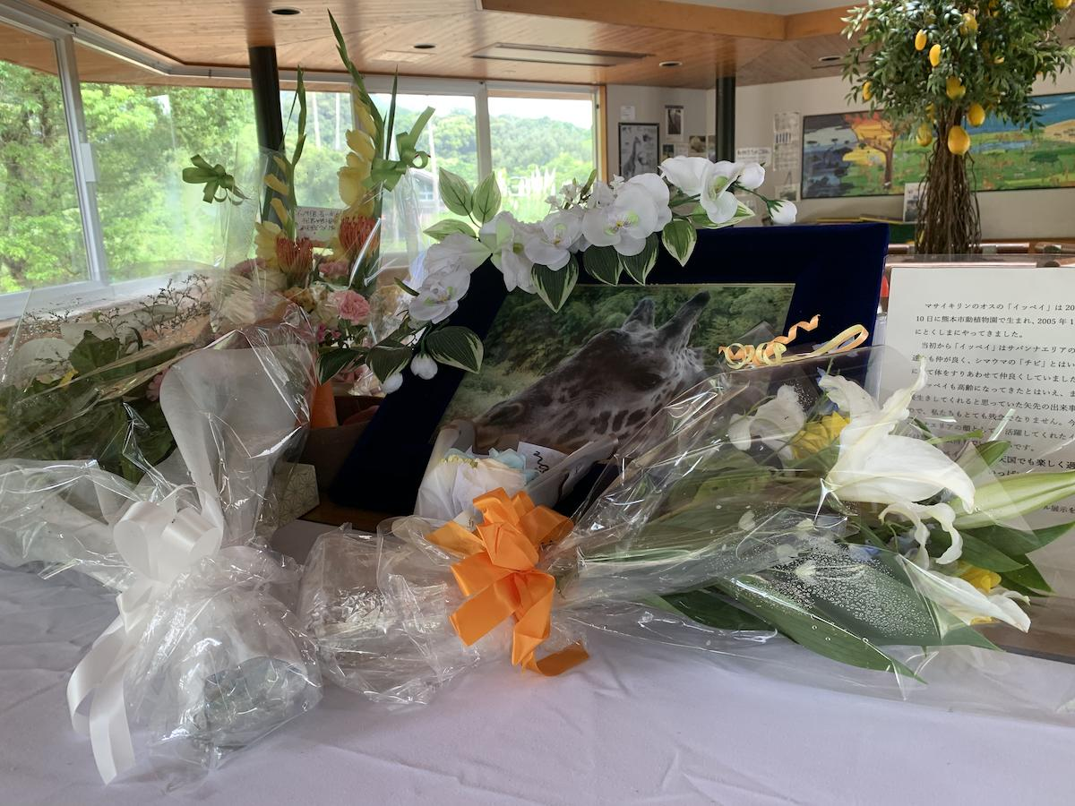 献花台に備えられた花