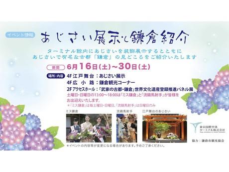 あじさい展示と鎌倉紹介のPRイベント告知ポスター