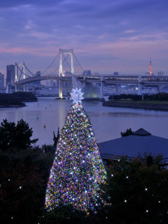 東京のランドマークを背景に華やかに点灯する「レインボーツリー」