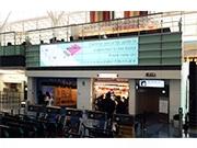 羽田空港で「情報ユニバーサルデザイン高度化」実験 世界最高水準の「おもてなし」目指す