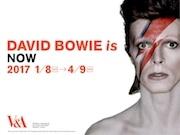 寺田倉庫で大回顧展「DAVID BOWIE is」 衣装など300点超公開