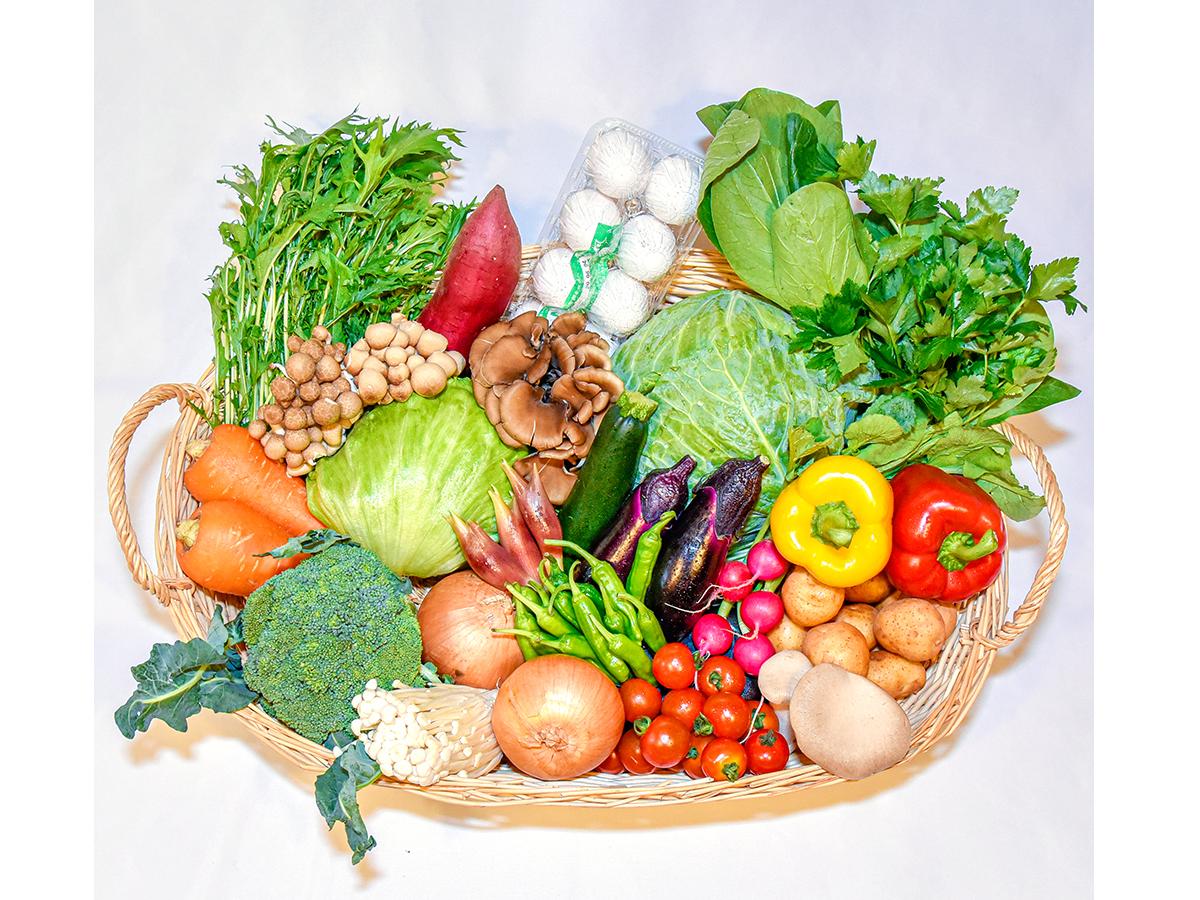 「目利きが選ぶ野菜セット」イメージ