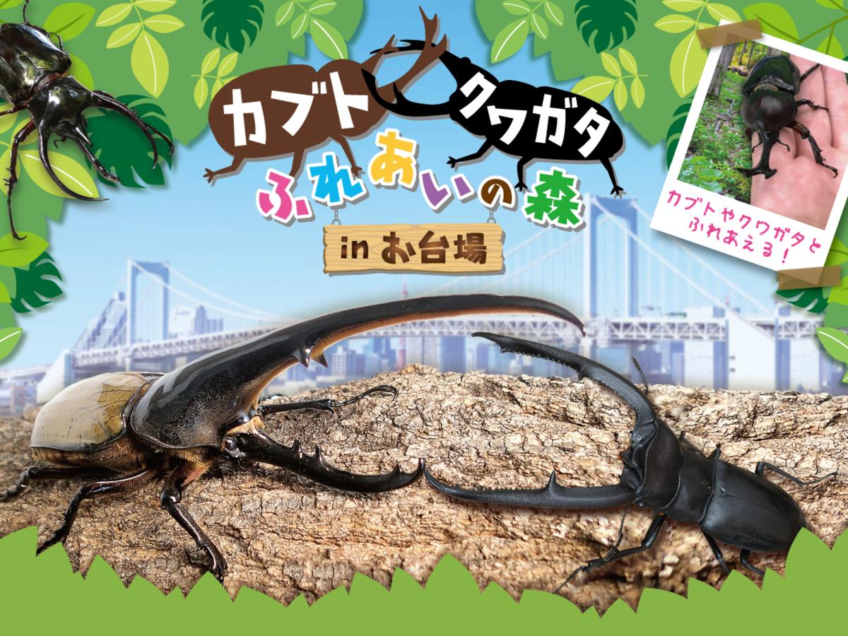 「カブト・クワガタ ふれあいの森 in お台場」メインビジュアル