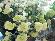 富山のカフェで母の日イベント 花販売とガレージセールも