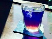 滑川の「旧宮崎酒造」にシェアカフェ 海をイメージしたメニューも