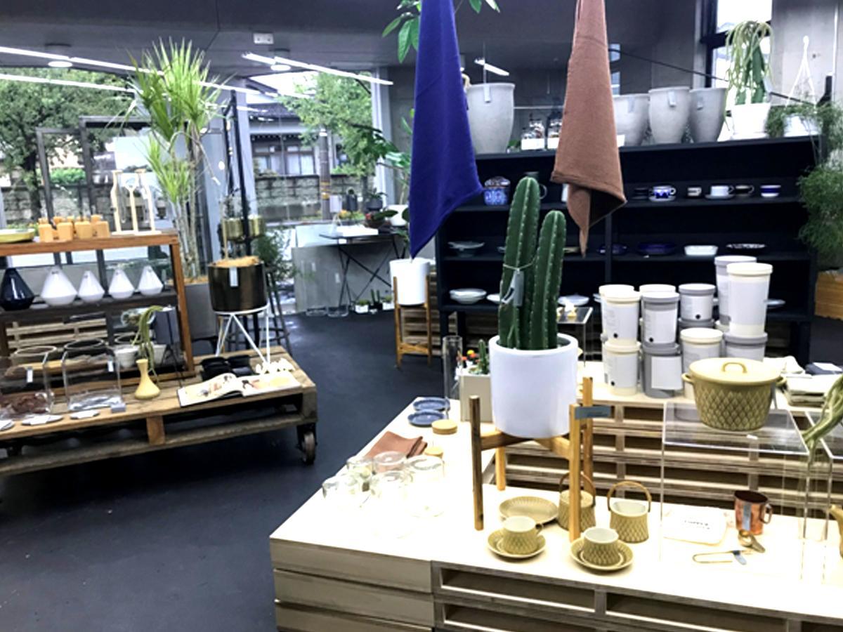 室内用のグリーンや雑貨が置かれた店内空間