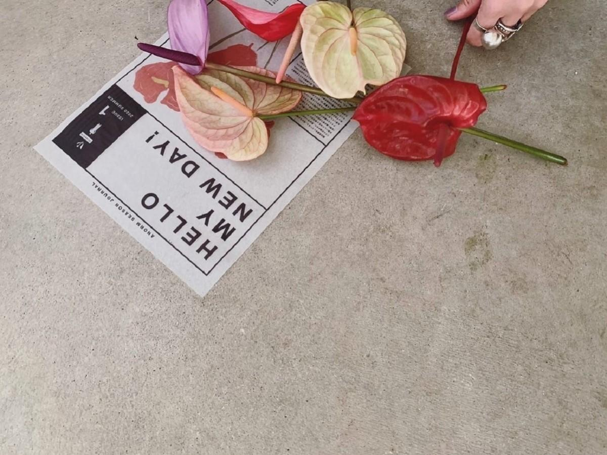 毎号ひとつの花にまつわるエピソードを綴る