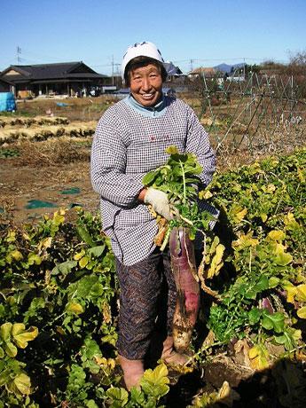 つくば市の農産物オーナー制には11箇所の農園が参加。写真は久松農園。