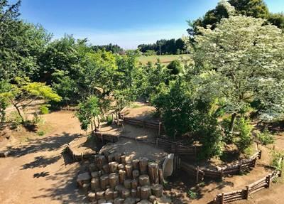 会場となる園庭