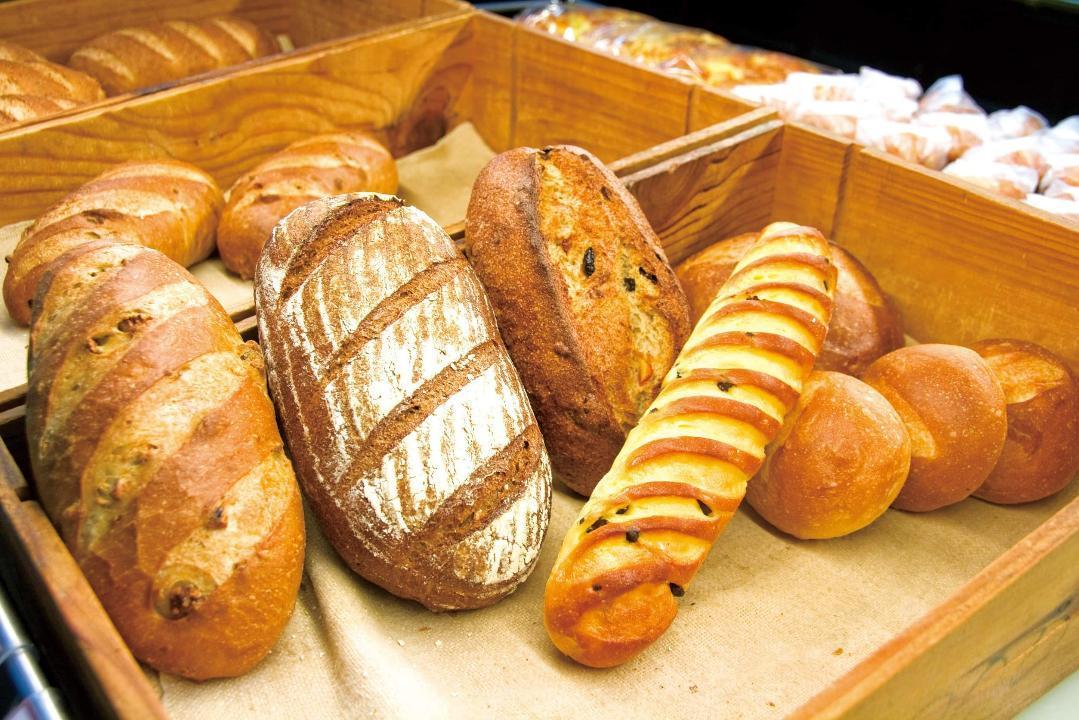 つくば市内外の約20店舗のパン店が出店