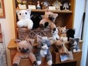 「猫の聖地」谷中・夕やけだんだんに猫グッズ専門店-オリジナルも