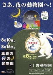 上野動物園で「夜の動物園」-開演時間延長、ビアガーデンも出現