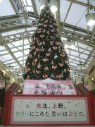 上野駅で3度目の東北支援クリスマス-6メートルの巨大ツリーも登場