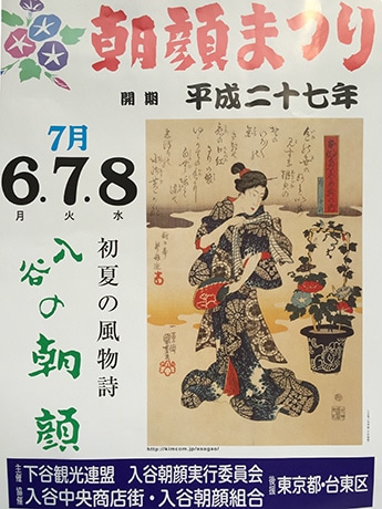 入谷で「朝顔まつり」 66年目、120軒の朝顔業者出店